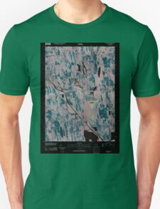New York NY Savannah 20100427 TM Inverted T-Shirt