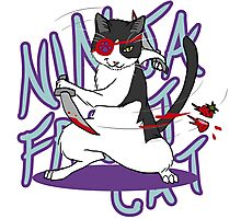Ninja Fruit Cat [Redbubble Art Party] Photographic Print