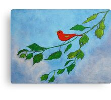Little red bird acrylic painting Canvas Print