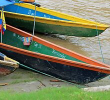 Boats on the Napo River by rhamm
