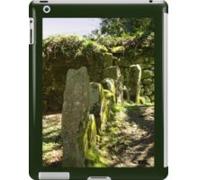 Historic markers iPad Case/Skin