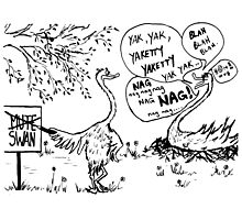 Zoo Humour - Cartoon 0008 Photographic Print
