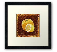 Orange And Lemon Decorative Painting Framed Print