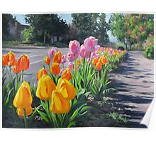 Street Tulips Poster
