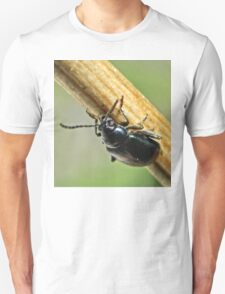 NS Beetle In Balance II ONFX© T-Shirt