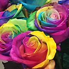Rainbow Roses by Margaret Stanton