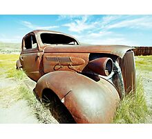 Out to Pasture Photographic Print