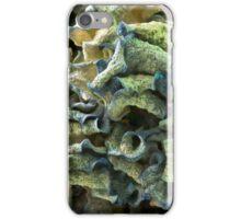 Curled Dried Blue Hydrangea Macro iPhone Case/Skin