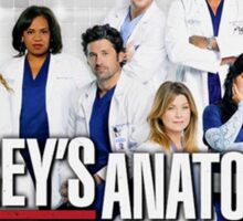 Grey's Anatomy Cast Sticker