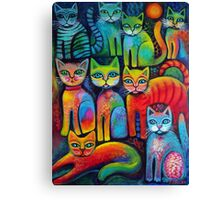 Colourful Kittens Canvas Print