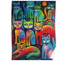 Colourful Kittens Poster