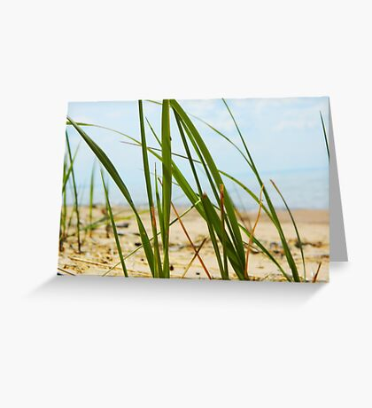 Lake Michigan Beach Grass Greeting Card