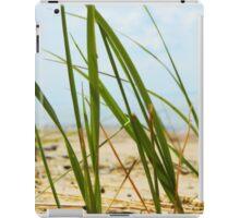 Lake Michigan Beach Grass iPad Case/Skin