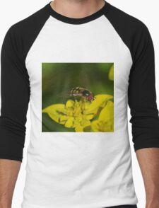 Hover Fly Men's Baseball ¾ T-Shirt
