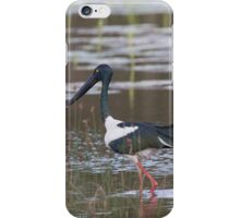 On A Dusk Pond iPhone Case/Skin