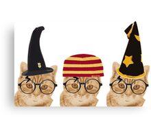 Potter cats2 Canvas Print