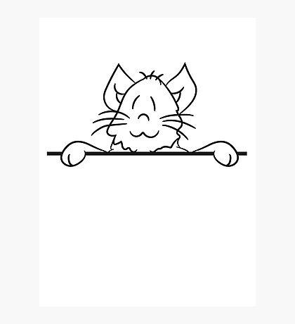sign text umrandung frame wall hiding sweet cute kitten fluffy fur Photographic Print