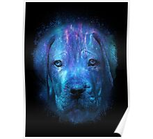 Galaxy Sad Dog Print Poster