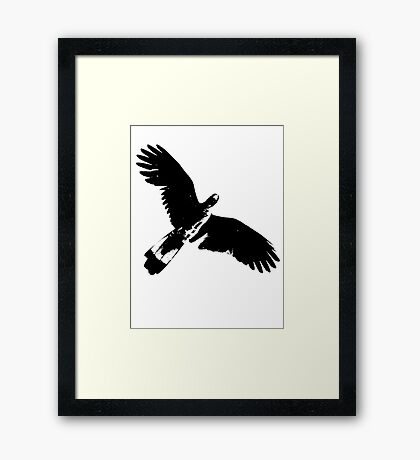Messenger from The Universe  Framed Print