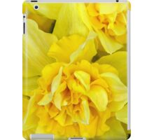 Yellow daffodils macro iPad Case/Skin
