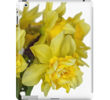 Daffodils macro in white iPad Case/Skin