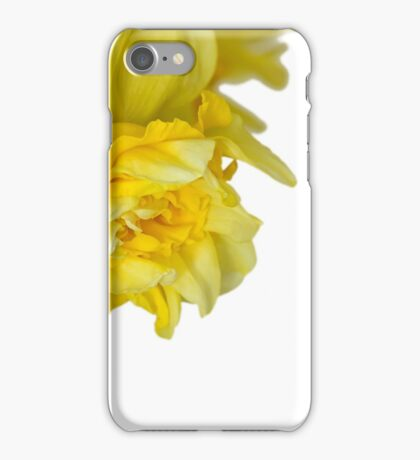 One daffodils macro iPhone Case/Skin