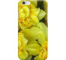 Yellow narcissus macro iPhone Case/Skin