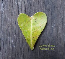 LOVE from Nature by FIONA M. HENSHAW