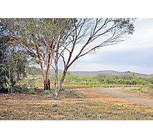 Picturesque scene along the Heysen Trail Photographic Print