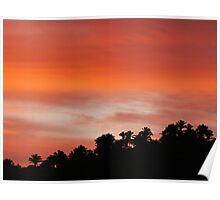 sunrise at the sierra madre - amanecer en la sierra madre Poster
