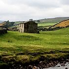 Swaledale Panorama, UK by GeorgeOne
