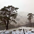 Snow Scene on Glencoe #2 by trish725