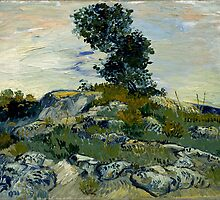 Vincent Van Gogh - The Rocks by lifetree