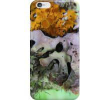 Lichen on Fallen tree iPhone Case/Skin