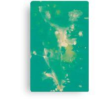 WDVT - 0041 - Background Radiance Canvas Print