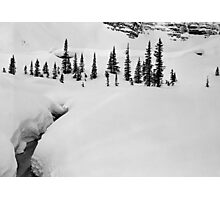 On the Crowfoot Glacier Trail, Winter 1974 Photographic Print