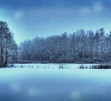 Pristine Winter Morning by floatingpilot