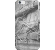 Out and About  iPhone Case/Skin