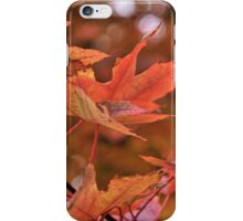 red delicious iPhone Case/Skin