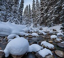 Snowy river with pine trees by Alan Mitchell