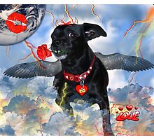 The Devil Cupid Dog That Came From Outer Space Photographic Print