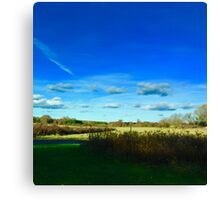 Hamptons Landscape Meadow and Clouds Canvas Print