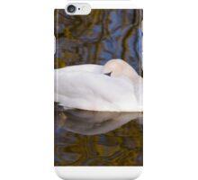 Sleeping Beauty iPhone Case/Skin