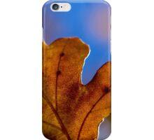 Autumn Oak Leaves 4 iPhone Case/Skin