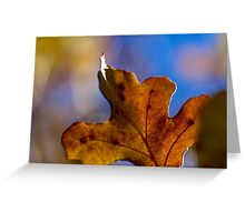 Autumn Oak Leaves 4 Greeting Card