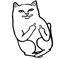 Middle Finger Cat Photographic Print