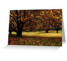Autumn at Bogong Vic Greeting Card