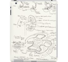 Kidney development and glomerulus of the mature nephron iPad Case/Skin