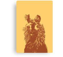 paper llama :: yellow wool fiber alpaca tina napoleon funny cute farm farmer animal ink drawing Canvas Print