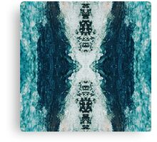 Splashx2 Canvas Print